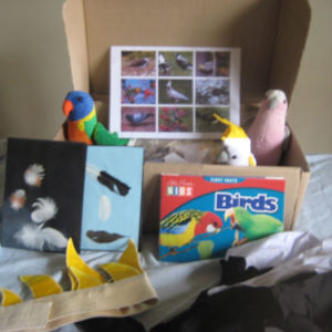 Native Birds Kit