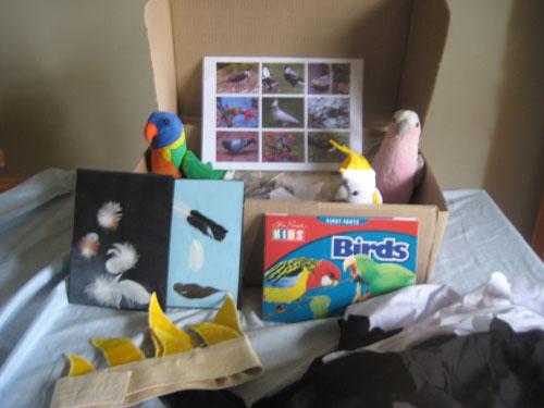 Native Birds Kit
