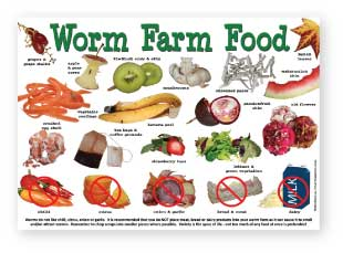 Worm Farm Food