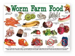 Worm Farm Food